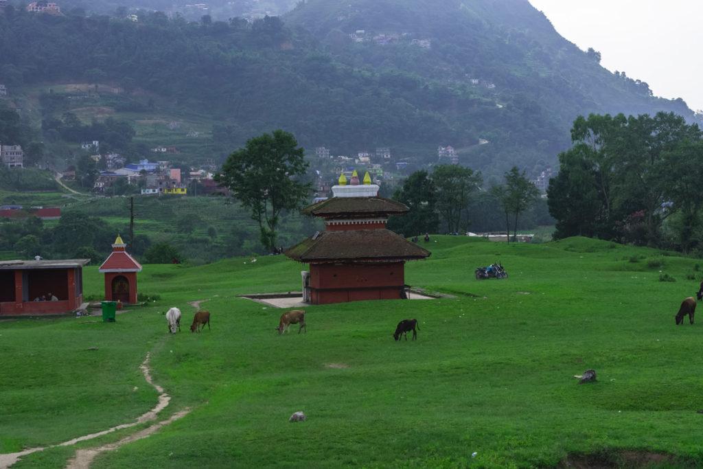 view khokhana